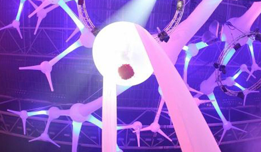 corpus_acrobatics_sensationwhite_netherlands3